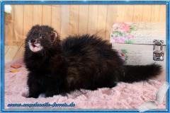 Freya 10 Monate